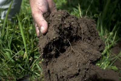 vita dedicata alla salvaguardia della natura e all'agricoltura biodinamica