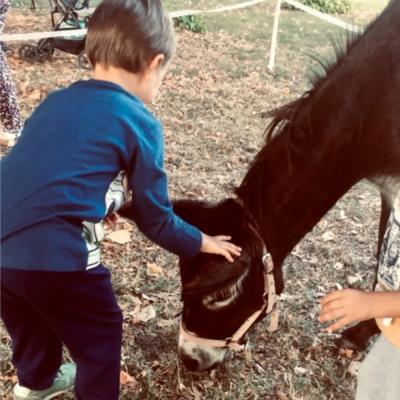 Bimbi felici all'agriasilo e al doposcuola in fattoria alle porte di Milano