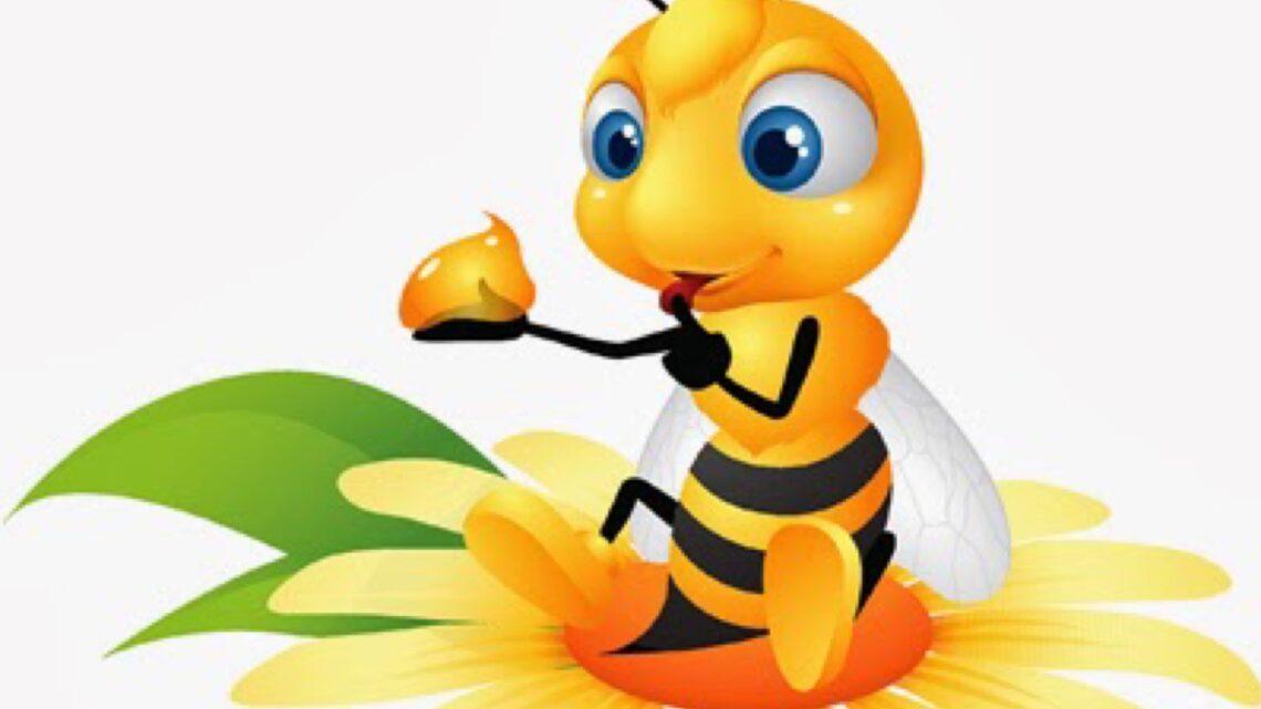 Che forza l'apiterapia! Con propoli, polline, cera, miele alzi le difese e ti mantieni in salute