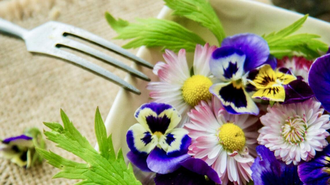 Metti i fiori nel piatto: un tocco gentile ai tuoi menù di primavera