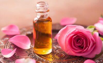 La rosa regina delle terapie antistress per corpo e mente