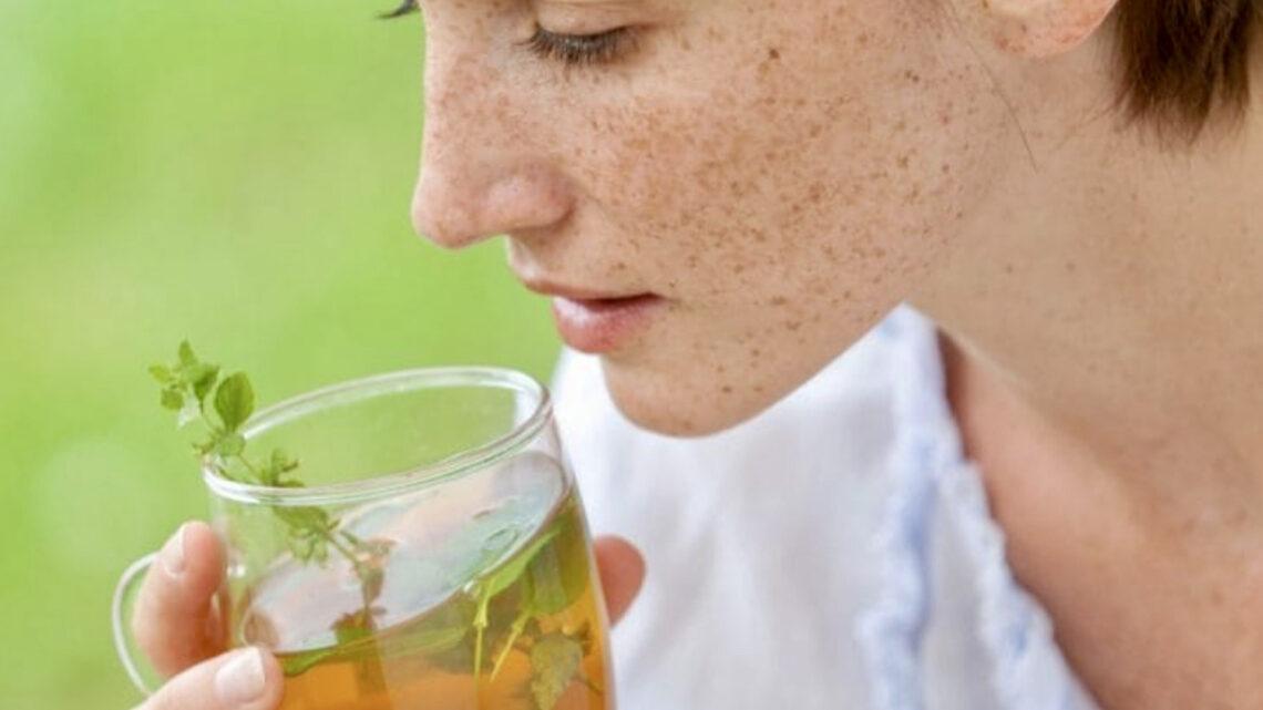 Alla scoperta delle tisane estive, fresche, profumate e salutari